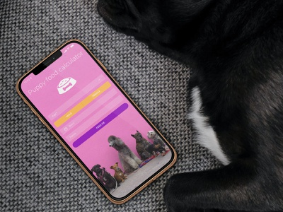 🐶Dog Food foodie dogs pets design clear material flat simple clean ui ux