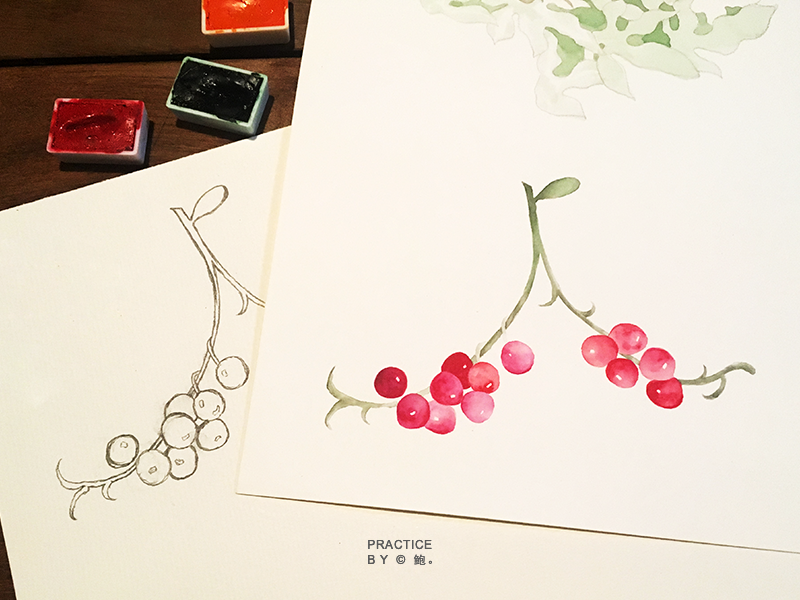 Berry watercolour painting