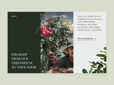 Plantship Website