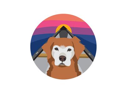 Sr Adventure Dog dogs dog sunset river canoe adventure dog golden retriever
