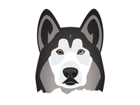 Husky Dog Illustration