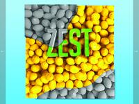 Web Layout Zest