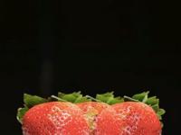 Double Exposure Strawberries