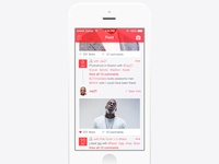 Photo sharing feed screen