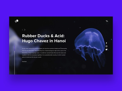 Rubber Ducks & Acid