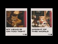 Cat Mixtape