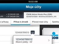 CSOB iPad Interface #01