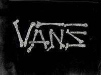 Vans Grimy Bones