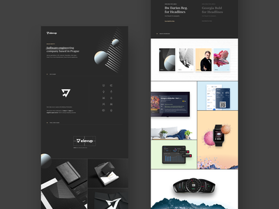 elevup Behance Case Study moodboard web logo brand and identity mark behance case study brand elevup