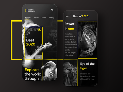 National geographic app concept rhino tiger shark animals national geographic uidesign illustration minimal mobile ui mobile appdesign