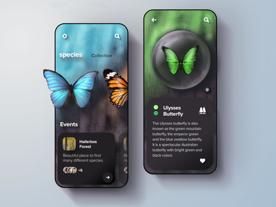 Buttterfly collection app concept interactive gradient spices nature butterfly ui design uidesign mobile illustration