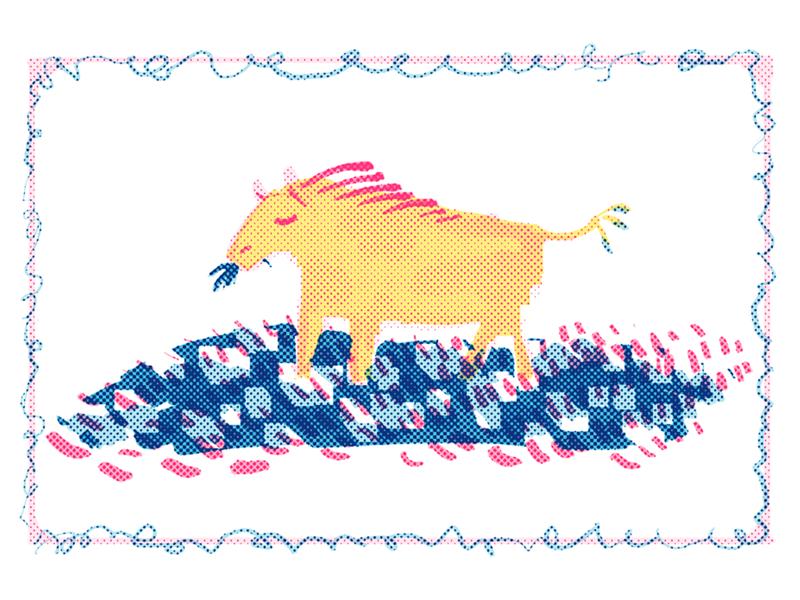 Horsecow Postcard