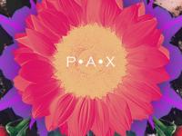 Pax (details 2) | Isaque Pereira aka RIZKO