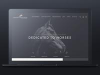 Premier Equestrian - Site Redesign
