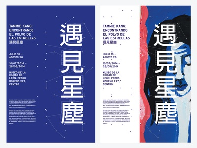 Meeting Stardust Posters poster