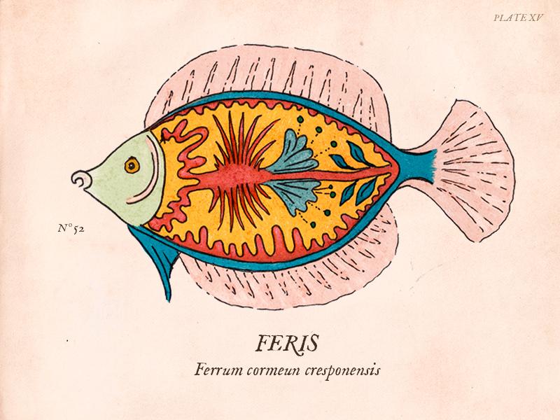 Ferrum cormeun cresponensis fakengravings botanical print antique fantastic ichthyology science anatomy fishes fish vintage illustration