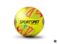 SportsPet ball artwork