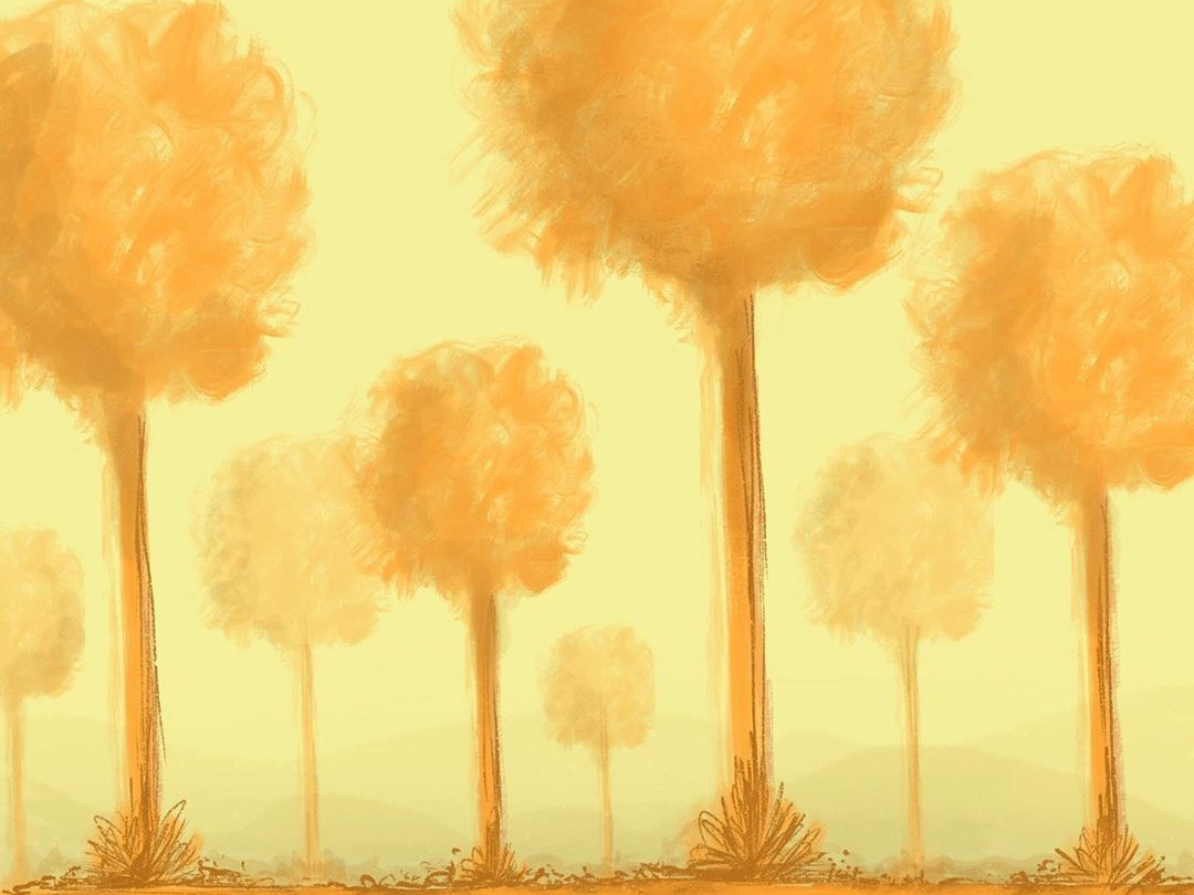 Warm Forest pathway branches space calm wooden nature warm grass trees forest