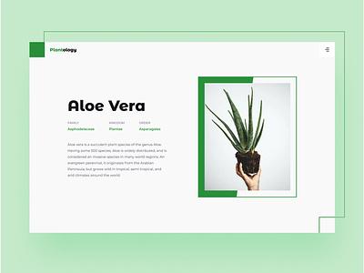 Day 045 minimal trend website uiux graphic design clean typography design ux ui