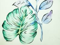Study of Tropical Leaves