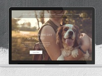 Landing Page Veterinary Clinic