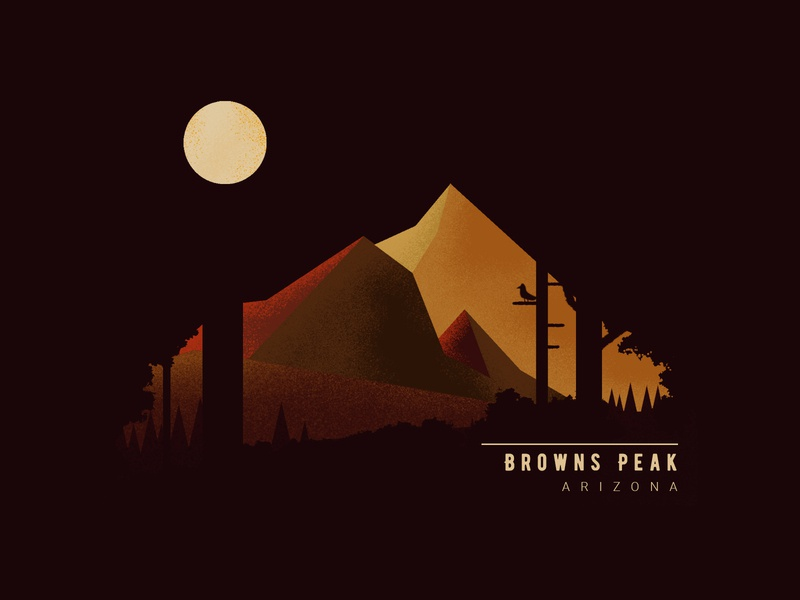 Browns Peak, Arizona trees brown natural night moon peak mount mountains nature web czech ui illustrator vector flat illustration minimal clean design
