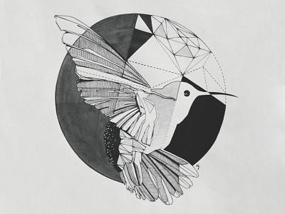 Hummingbird personal project ink hummingbird