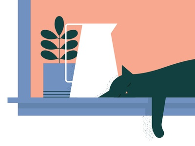 """Sill Life"" WIP nap sun pitcher plant window cat"