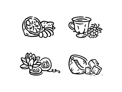 illustrations vector scent perfume packaging notes icons fragrance illustration fourhands beauty
