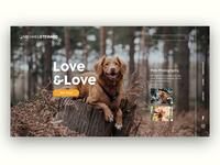 UI Pet Photography