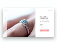 UI Ecommerce Jewelry Store