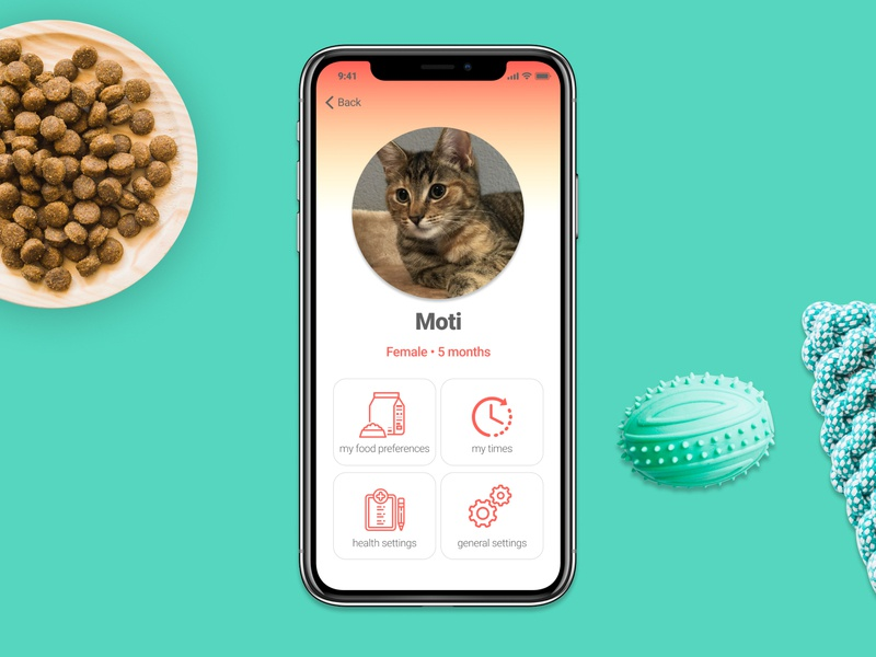 DailyUI challenge #006 Profile Page food profile screen profile cat pet dailyui006 dailyui