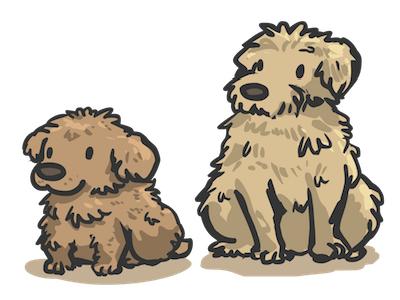 Poodles Mix breed illustration vector dog poodles