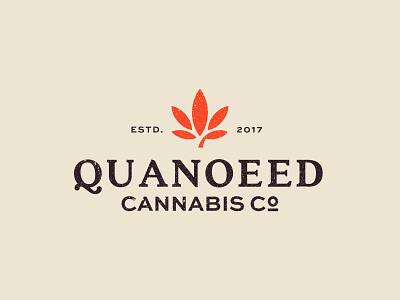 Quanoeed Cannabis identity mark symbol branding designer design logo cannabis branding cannabis logo cannabis
