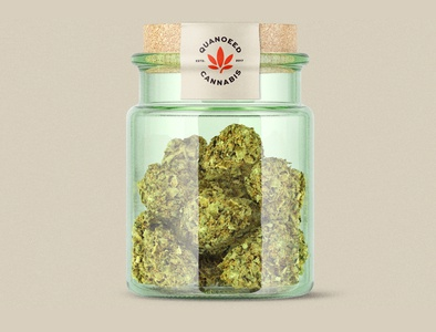 Marijuana Jar design for Quaneed Cannabis. brand design cannabis branding cannabis design cannabis logo mockup design logo marijuana