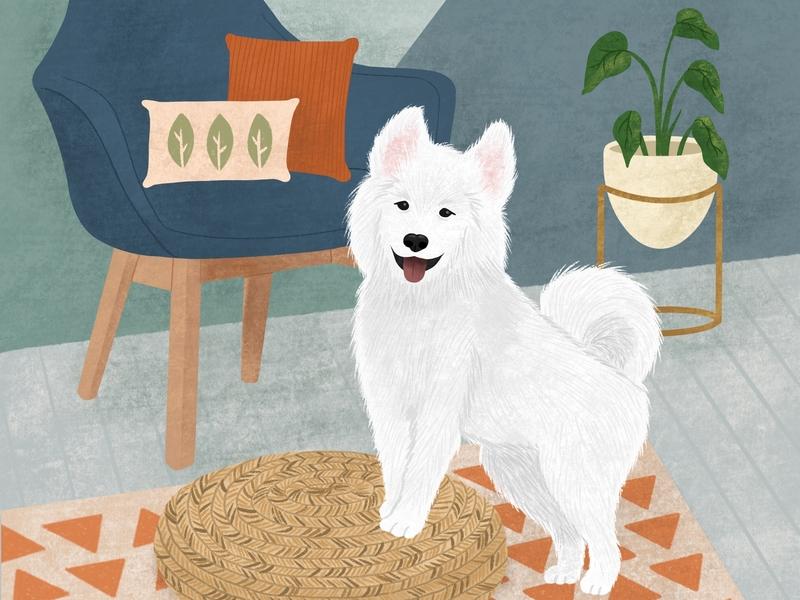 Samoyed Puppy Portrait By Circe Oropeza Dribbble Dribbble