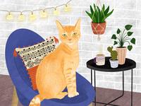 Gingery cat portrait