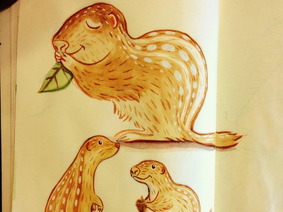 13 Lined Ground Squirrel  illustration watercolor ground squirrel 13 lined ground squirrel sketchbook
