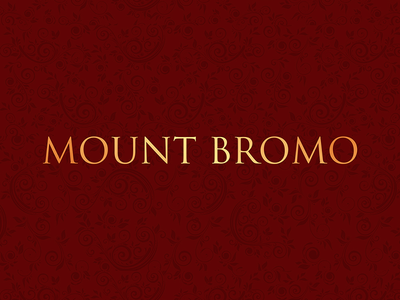 Mount Bromo Logo Design