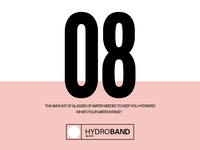Hydroband 08 Poster