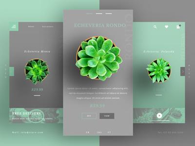 Succulent UI UX Landing Page web uxui website design ecommerce ux ui landing page