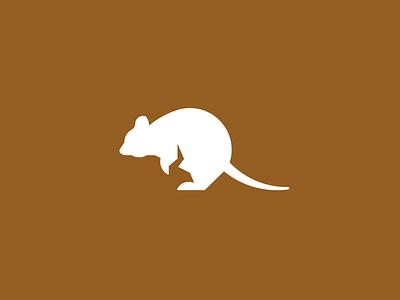 Quokka logo challenge alphabet daily logo kangaroo rat quokka