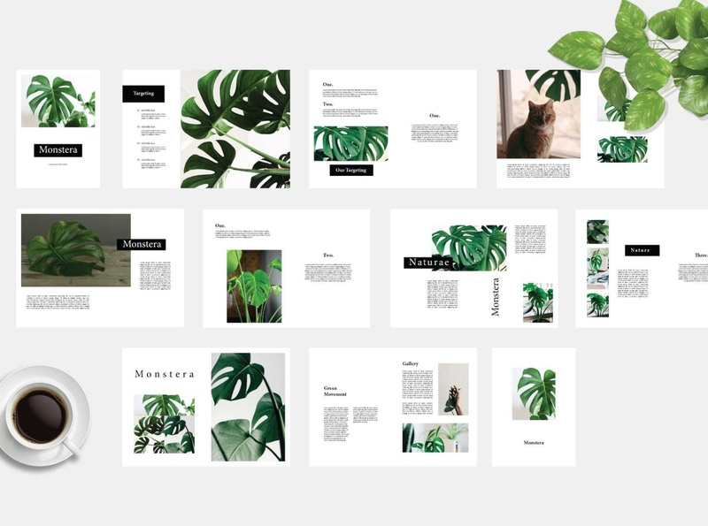 Monstera - Botanical Megazine botanical illustration botanical catalogue clean business elegant portfolio modern magazine branding brochure template