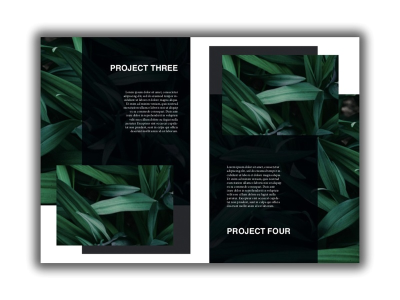 10 Project Template - A4 catalog fashion proposal design clean studio lookbook editorial catalogue indesign elegant modern business magazine branding portfolio template brochure