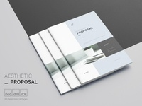 Aesthetic Proposal Template