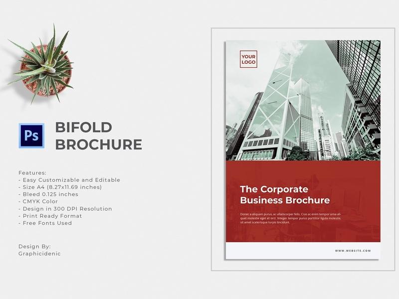Bifold Brochure feminine catalog fashion studio proposal design lookbook editorial indesign clean catalogue elegant business modern portfolio magazine branding brochure template bifold