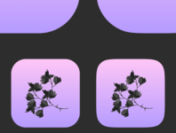 Rounded Rectangle vs Squircle flowers black dreamy gradient pink app icon logo app ui iphone x squircle