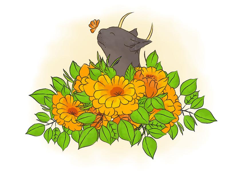 心之所想,心之所向~ 希望 花 喵 猫 向日葵 插画设计 插画 设计 插图