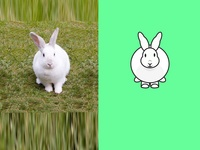 Rabbit Post