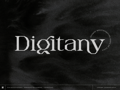 Digitany Serif-Bitmap display font typogaphy type display font shoots font simple designs clever logo designs simple flat logo